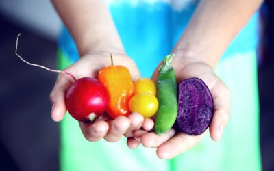 Artikel AGF over voedselveiligheid (NL)